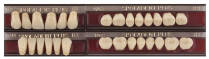 вашему спофадент зубы каталог с картинками магнитофонных кассет